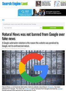Search Engine Land Piece on Natural News
