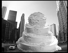 seo cake